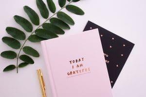 gratitude journal for lifting vibration